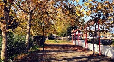 Photo of Tea Room Cumhuriyet Parkı Çay Bahçesi at Sahil Mevkii Akçaabat Otogarı Yanı, Akçaabat 61300, Turkey