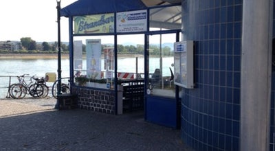 Photo of Beer Garden Rheinpavillon at Rathenauufer 1, Bonn 53113, Germany