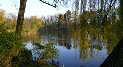 Photo of Lake Stawy Sołackie at Poland