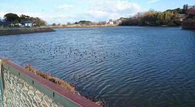 Photo of Lake 岩田池公園 at Japan