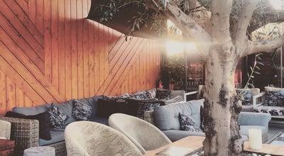 Photo of Hookah Bar Tirano Bar at Belgium