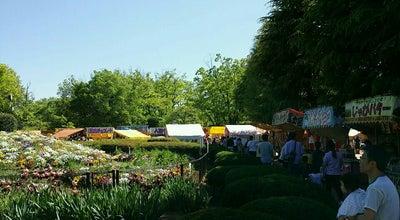 Photo of Park 遊亀公園 at 太田町10, 甲府市 400-0865, Japan
