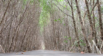 Photo of Botanical Garden โครงการศึกษาวิจัยและพัฒนาสิ่งแวดล้อมแหลมผักเบี้ย อันเนื่องมาจากพระราชดำริ (Royally-Initiated Laem Phak Bia Environmental Research and Development Project) at ต.แหลมผักเบี้ย, Ban Laem, Thailand