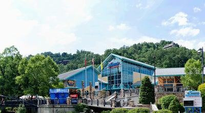 Photo of Aquarium Ripley's Aquarium of the Smokies at 88 River Rd, Gatlinburg, TN 37738, United States