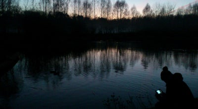 Photo of Lake Jeziorko przy torach at Poland