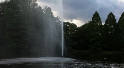 Photo of Lake Stadtpark Ententeich at Germany