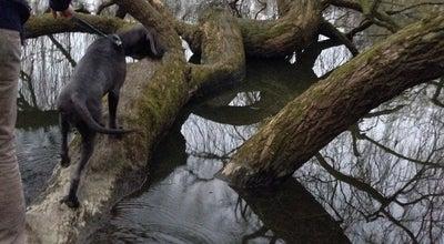 Photo of Park Eilandje at Belgium