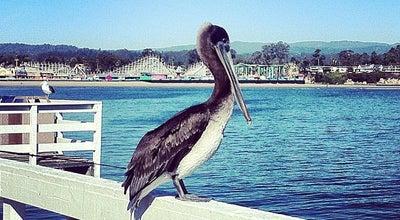 Photo of Pier Santa Cruz Wharf at 21 Municipal Wharf, Santa Cruz, CA 95060, United States