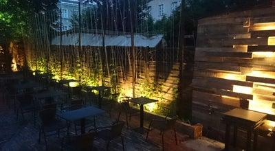 Photo of Pub Chmielnik at Żydowska 27, Poznań, Poland