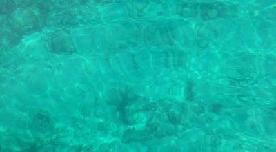 Photo of Beach Harry Harris Park at Mile Marker 92.5, Key Largo, FL 33037, United States