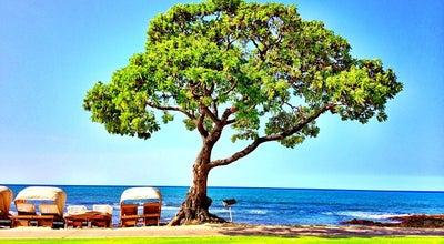 Photo of Restaurant Beach Tree at 72-100 Kaupulehu Dr, Kailua Kona, HI 96740, United States