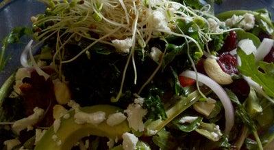 Photo of Vegetarian / Vegan Restaurant The Garden at 3435 Albion St, Denver, CO 80207, United States