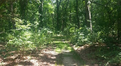 Photo of Park Laurel Lake Park at Laurel Lake Rd., Laurel, NY 11948, United States