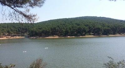 Photo of Lake aydos Gölet at Turkey