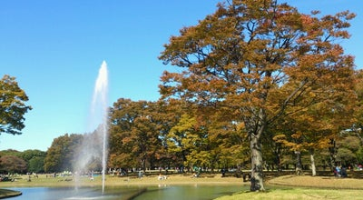 Photo of Other Venue Yoyogi Park at