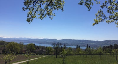 Photo of Mountain Zürichberg at Zurich, Switzerland