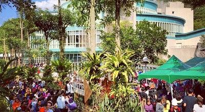 Photo of Zoo 貓熊館 at 新光路二段30號, Taipei, Taiwan