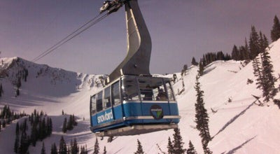 Photo of Ski Area Snowbird Ski & Summer Resort at Utah Highway 210, Snowbird, UT 84092, United States