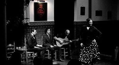Photo of Performing Arts Venue La Casa del Flamenco-Auditorio Alcántara at C. Ximénez De Enciso, 28, Seville 41004, Spain