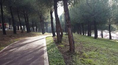 Photo of Park Çamlıca Parkı at Bursa, Turkey