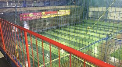 Photo of Baseball Field 秦野バッティングパレス at 日本, Japan