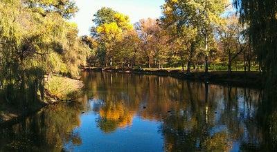 Photo of Park Дубовая Роща at Вул. Глісерна, Запорожье 69000, Ukraine