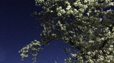 Photo of Park 桜の森公園 at 南玉垣町字東鼻野3500番5, Suzuka, Japan