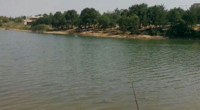 Photo of Lake yenice göleti at Turkey