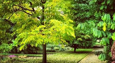 Photo of Botanical Garden University of Oxford Botanic Garden at Rose Ln, Oxford OX1 4AZ, United Kingdom