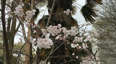 Photo of Trail 電気通信大学 丘の小道 at 調布ヶ丘1-5-1, 調布市 182-8585, Japan