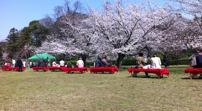 Photo of Park 舞鶴公園 at 中央区城内1, 福岡市 810-0043, Japan