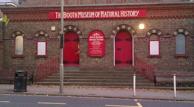 Photo of History Museum Booth Museum of Natural History at 194 Dyke Rd, Brighton BN1 5AA, United Kingdom