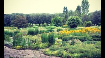 Photo of Botanical Garden Grădina Botanică at Str. Pădurii, 18, Chișinău 2002, Moldova