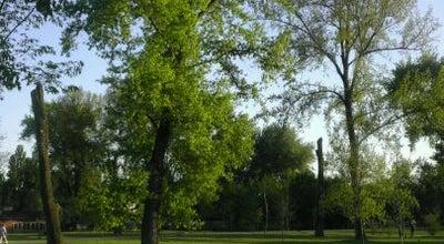 Photo of Park Limanski park at Narodnog Fronta, Novi Sad 21000, Serbia