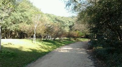 Photo of Park Parque da Juventude at Av. Zaki Narchi, 1309, São Paulo 02029-001, Brazil