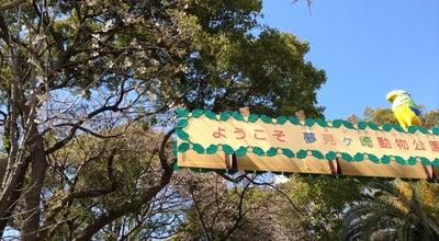 Photo of Zoo 夢見ヶ崎動物公園 at 幸区南加瀬1-2-1, Kawasaki 212-0055, Japan