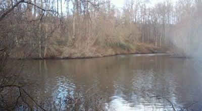 Photo of Trail Black River Riparian Forest at Renton, WA 98055, United States