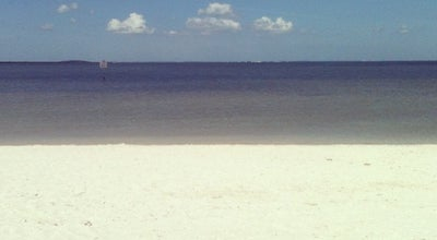 Photo of Beach Cypress Point Park and Beach at 5620 W Cypress St, Tampa, FL 33607, United States