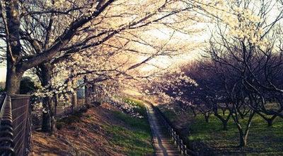 Photo of Park 大宮花の丘農林公苑 at 西区西新井124, さいたま市, Japan