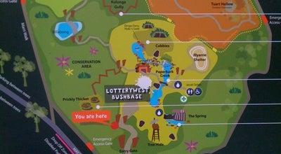 Photo of Playground Rio Tinto Naturescape at Kings Park, We, Australia