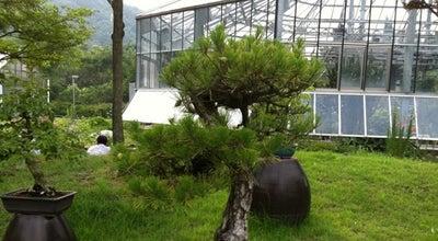 Photo of Botanical Garden 대구수목원 (Daegu Arboretum) at 달서구 화암로 342, 대구광역시 704-838, South Korea