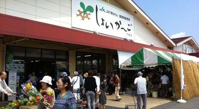 Photo of Farmers Market しょいか〜ご 千葉店 at 若葉区小倉町871, 千葉市 264-0007, Japan