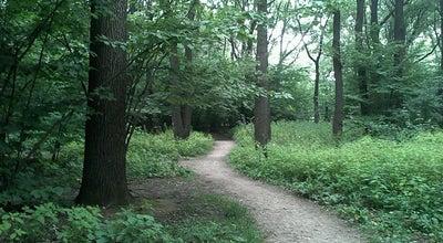 Photo of Trail Прогулочная тропа at Воронцовский Парк, Москва, Russia
