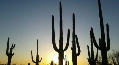 Photo of National Park Saguaro National Park at 3693 S Old Spanish Trl, Tucson, AZ 85730, United States
