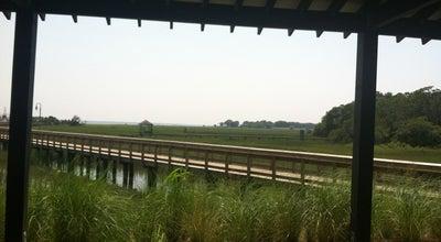 Photo of Park Shem Creek Park at Shrimp Boat Lane, Mt Pleasant, SC, United States