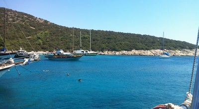 Photo of Beach Escape Beach Club at Gümbet, Muğla 48400, Turkey