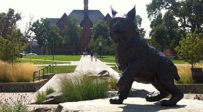 Photo of Monument / Landmark Bobcat Statue at Montana State University Campus, Bozeman, MT 59715, United States