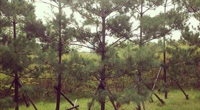 Photo of Park 화랑공원 at 분당구 대왕판교로645번길 21, Seongnam-si, South Korea