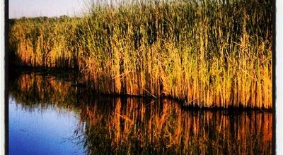 Photo of Lake Eagle Lake at 6232 Eagle Lake Dr, Maple Grove, MN 55369, United States