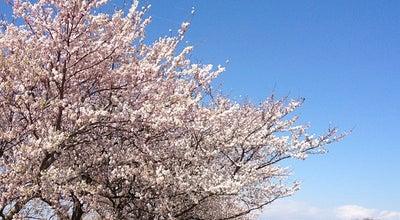 Photo of Park 等々力緑地 at 中原区等々力1-1, Kawasaki 211-0052, Japan